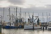 foto of katrina  - Shrimp boats work all night and rest in the daylight hours on the Mississippi Gulf Coast - JPG