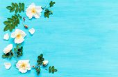 Summer Flower Background With Composition Made Of White Rose Flowers On The Blue Wooden Background.  poster
