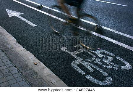 Cyclist On Urban Cyceway