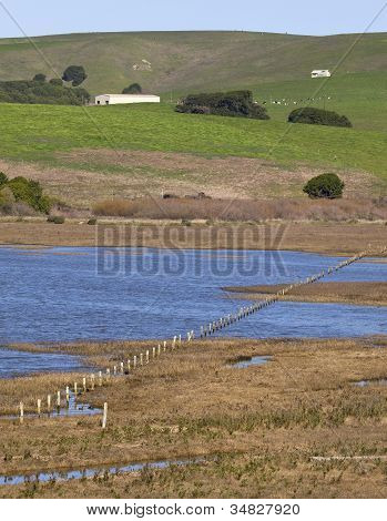 Tomales Bay and Hillside