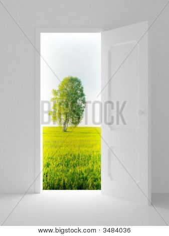 Landscape Behind The Open Door. 3D Image