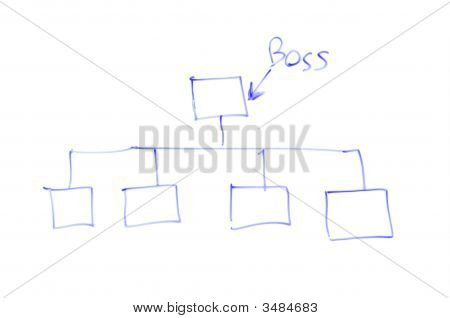 Sketch Of Organisation Chart On White Board