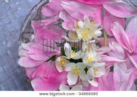 Jasmin Flowers And Peon Petals Floating In Water
