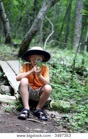 Boy Studying Nature