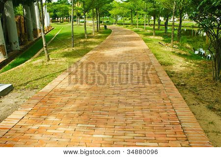 Work Way Paved Roads In The Park