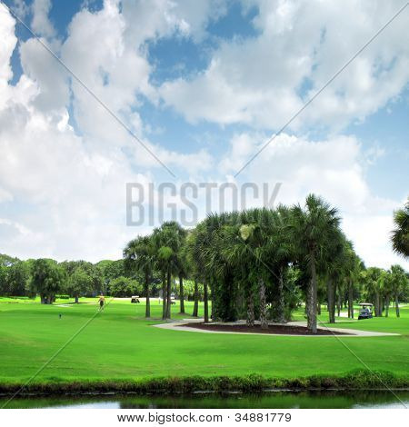 an image of view from Florida,USA