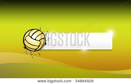 Volleyballs Or Handball