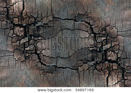 Structure Of The Scorched Plywood