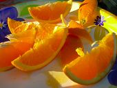 Постер, плакат: Апельсиновые дольки