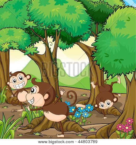 Illustration of the three monkeys playing in the forest