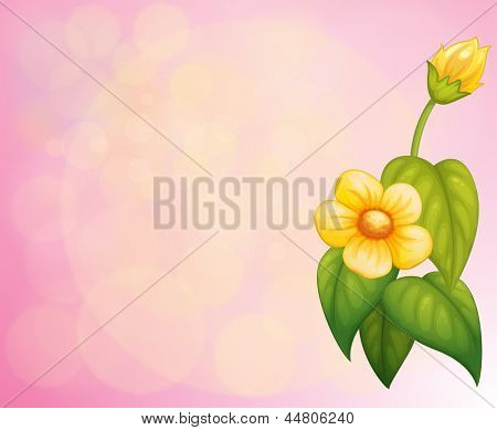 Illustration of a pink stationery with a yellow flower