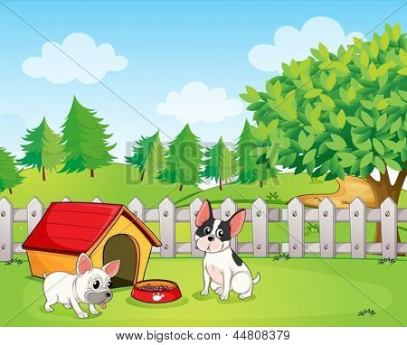 Illustration of a backyard with two dogs