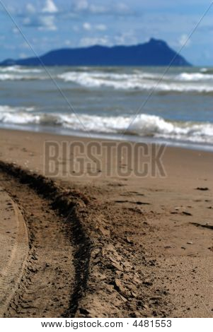 Tire Track By The Sea