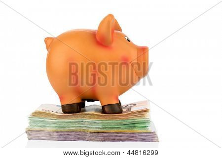 a piggy bank is on banknotes, symbolic photo for economy, profitability, return on
