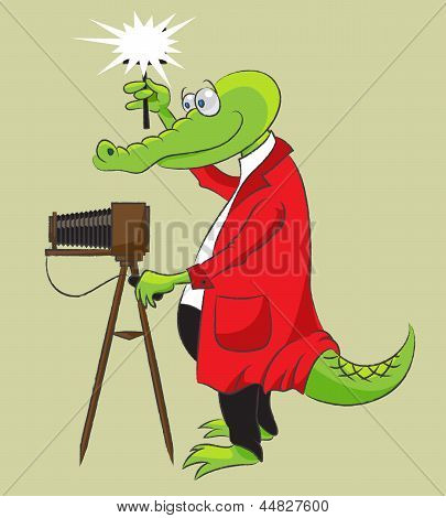 Crocodile-photographer