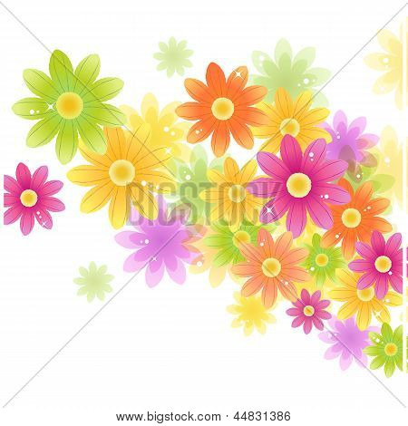 Vector Gerbera Flower Background