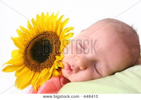 Baby In Dreamland
