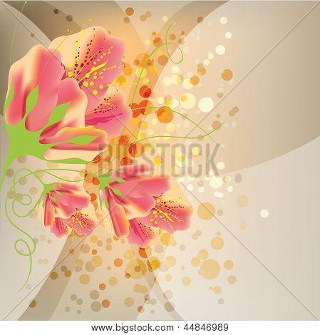 Floral Background, Flower Design