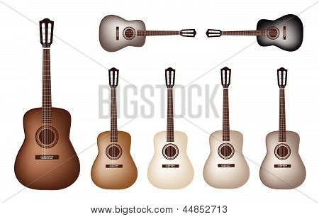 Beautiful Vintage Classical Guitars on White Background