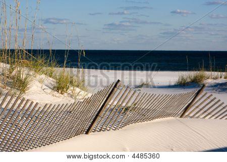 Sand Fence Along The Gulf Coast, Florida
