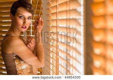 Woman And Venetian Blind