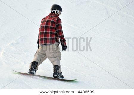 Snow Boarder Plaid