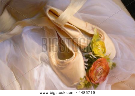 Sapatilhas e pintura da flor