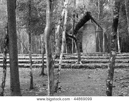 Coba Mayan Stele