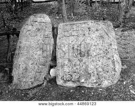 Coba Mayan Glyphs