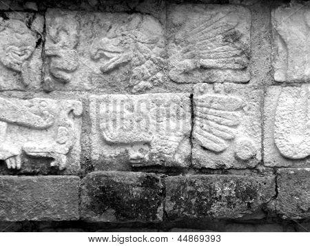 Águia de glifos maias de Chichen Itza