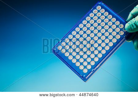 Well plate sample medical tray in hand