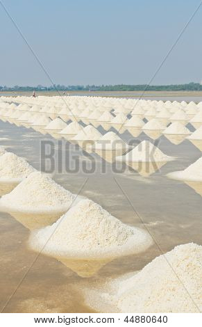 Sea Salt Piles