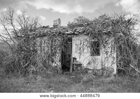 Creepy House In Black And White