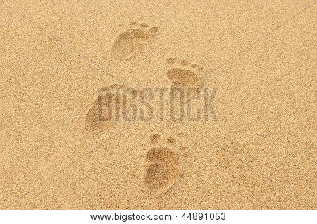 Baby Footprints In The Sand Of A Beach
