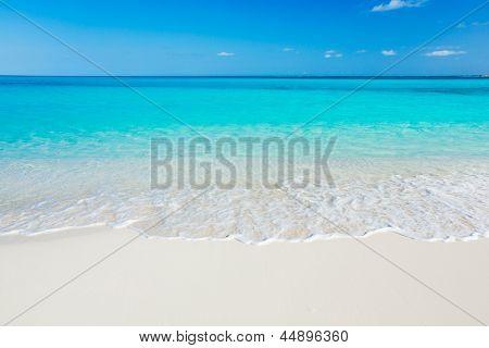 Tropical Playa de arena blanca y mar