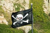 Skull & Crossbones  On Flag