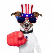stock photo of veterans  - american dog pointing with big finger at you - JPG