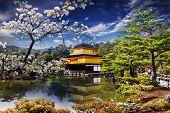 foto of praying  - gold temple japan for adv or others purpose use - JPG