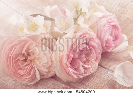 Postcard With Fresh Roses And Jasmine