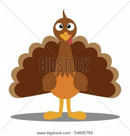 Turkey Cute Cartoon