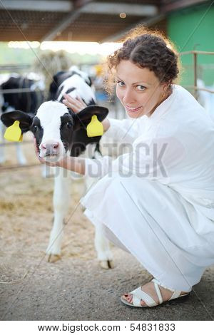 Woman in white robe caresses small calf and looks at camera in big cow farm.