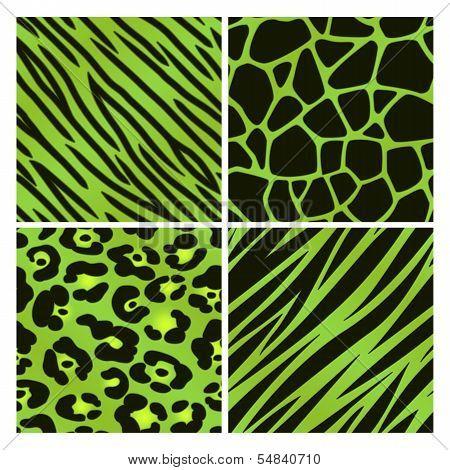 Green Animal Print Collection