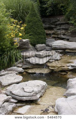 Vertical Water Garden
