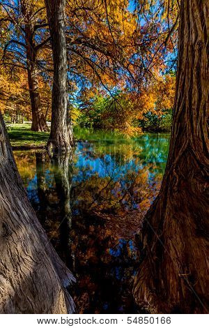 Beautiful Reflections of Fall Foliage On The Guadalupe River, Texas.