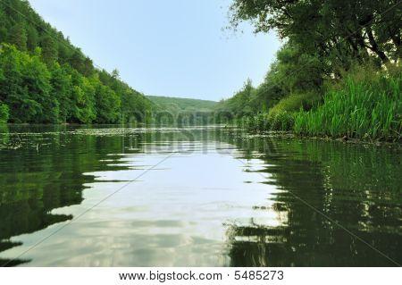 Floresta pitoresca e o Rio