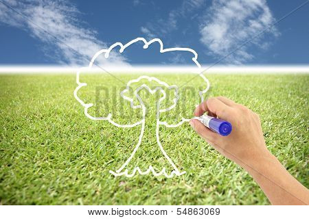 Hand Is Drawing A Tree On The Grass And Blue Sky.