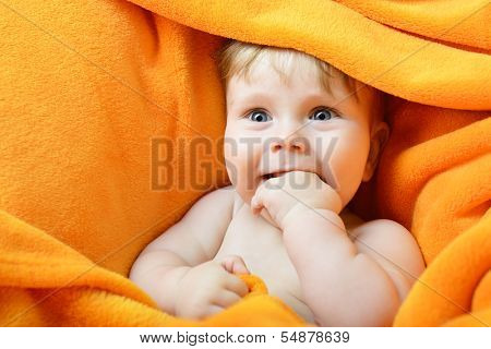 Portrait of cute frisky baby boy look out from orange plaid, adorable child face closeup