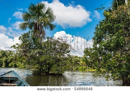 boat in the river in the peruvian Amazon jungle at Madre de Dios Peru