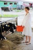 Happy woman in white coat holds container with food for eating small calves at large farm.