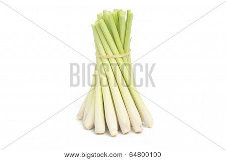 Bundle of Fresh lemon grass isolated on white background